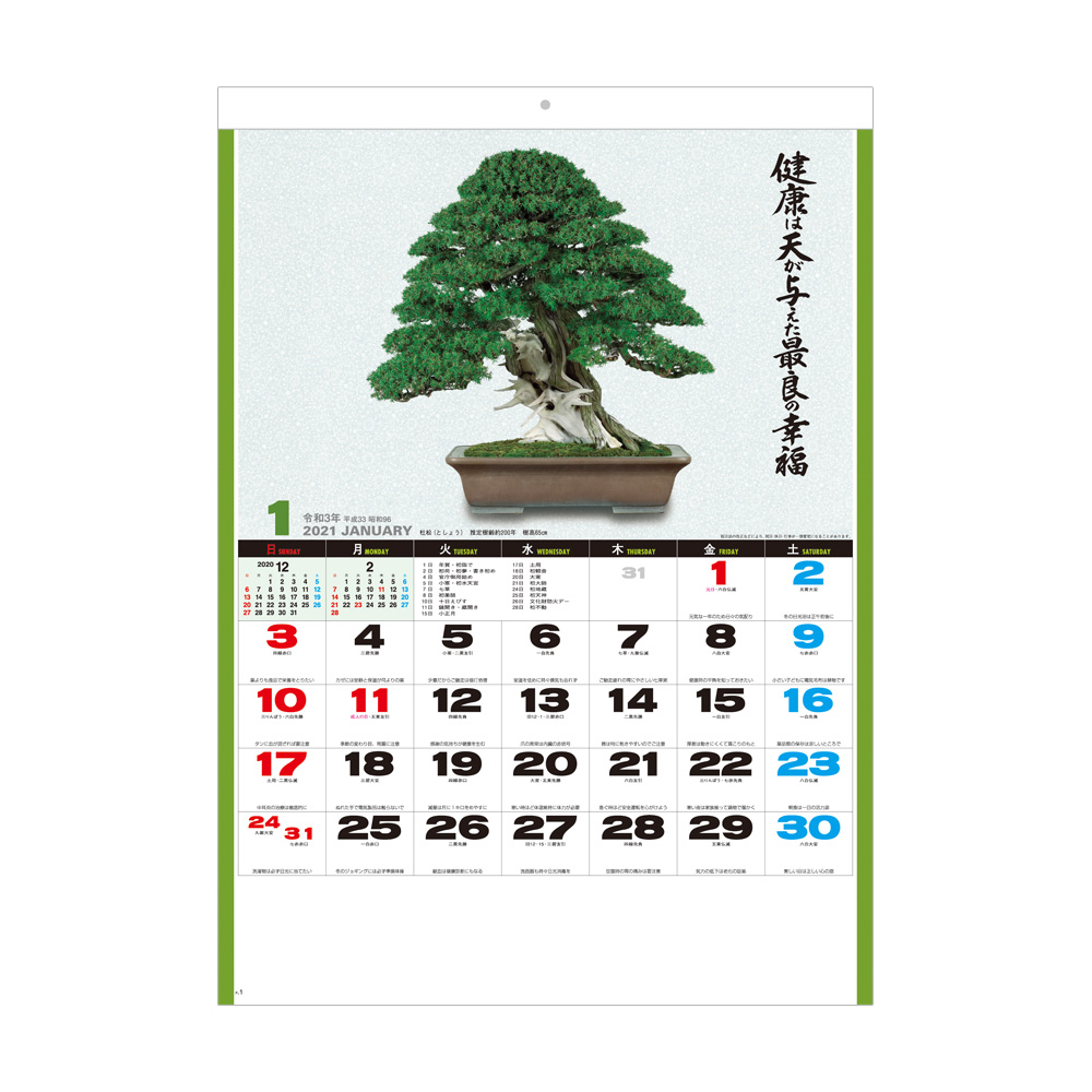 SG278 自然愛<盆栽>